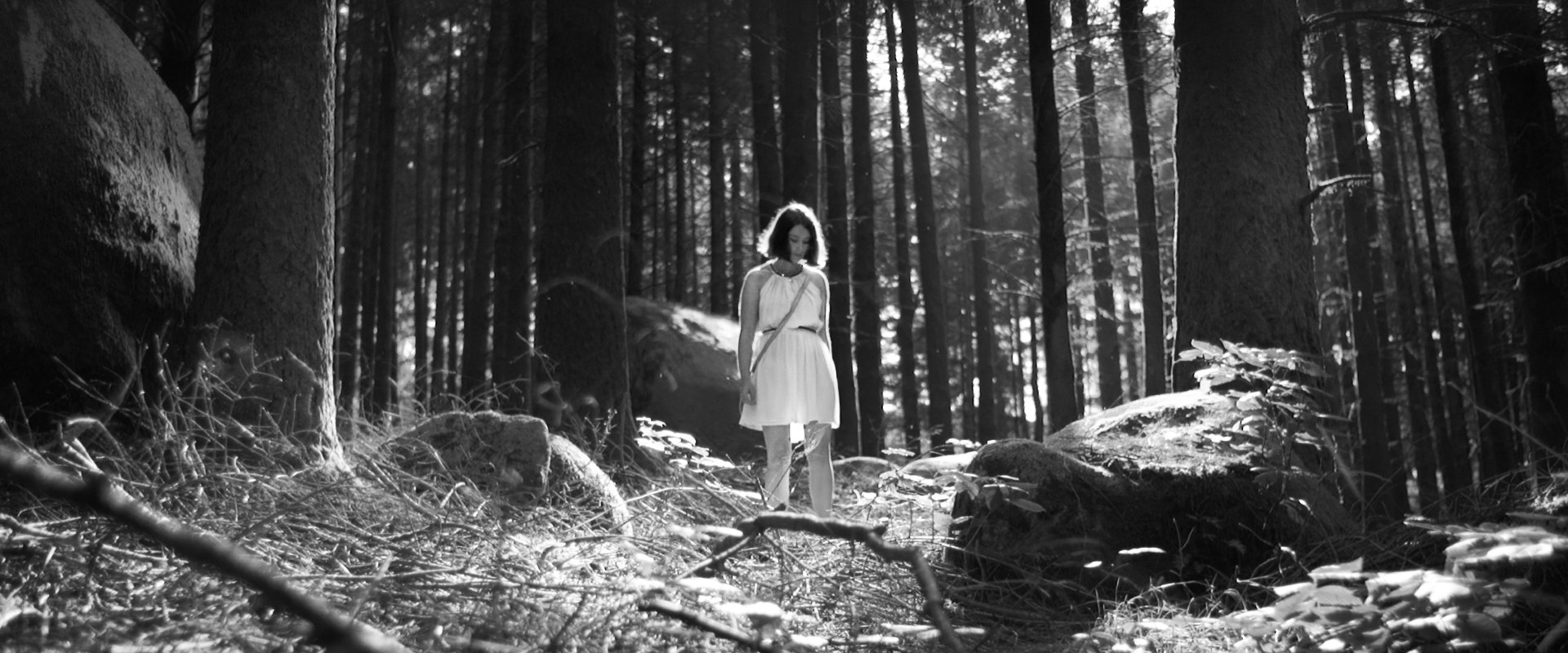 woman wearing a summer white dress alone in a forest of massive trees