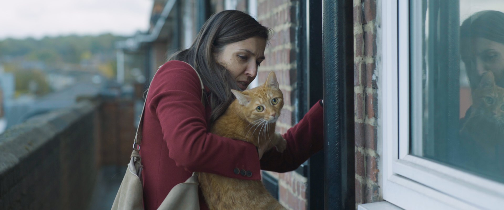 woman at door holding ginger cat