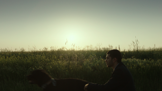 a man sitting in a field as the sun sets