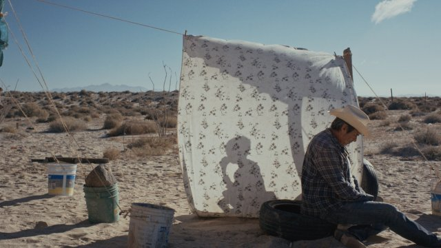 A man in a desert has constructed a small area of shade from a dry tree and a sheet