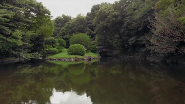 A lush Japanese garden with a bridge can be seen across a lake